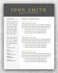 Resume Template Modern Enchanting Modern Executive Resume Template Funfpandroidco