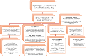 Toward The Development Of A Comprehensive Cancer Experience