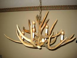 full size of whitetail deer antler floor lamp pine cone mule chandelier how to make enchanting