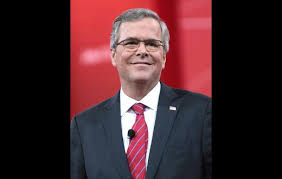Jeb Bush Quotes Extraordinary Jeb Bush Quotes