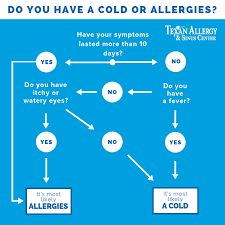 Cold Vs Allergy Symptoms Chart Cold Or Allergies