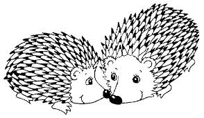 Small Picture The Fable of the Porcupines Stories for Muslim Kids