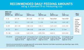 Purina Puppy Feeding Chart How Much To Feed A Puppy Puppy Feeding Chart Purina Dog