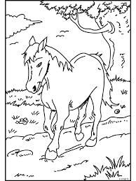Kleurplaat Paard In De Weide Kleurplatennl