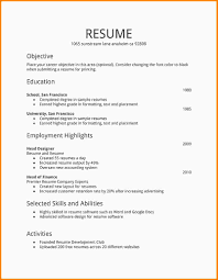 6 First Job Resume Template Nypd Resume
