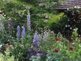 Small Picture Small English Cottage Garden Design With English Perennial Garden