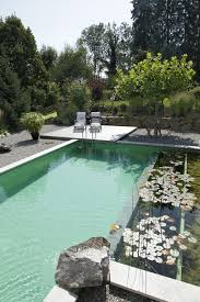 natural looking in ground pools. Image Source Natural Looking In Ground Pools