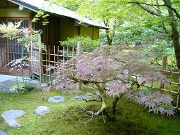 The chashitsu, Japanese Garden, Washington Park Arboretum, Seattle,  Washington, USA