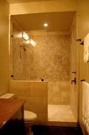 Walk In Shower Designs Doorless