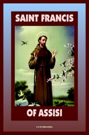 Image result for st. francis assisi