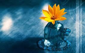 Spotimg Flower 桌面图片Download ...