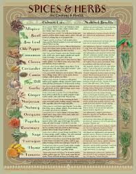Healing Herbs Spices Kitchen Chart Spices Herbs
