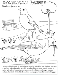 Bird Coloring Pages For Kids