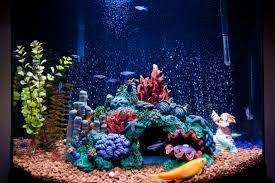 Which Aquarium Lighting System is Best For Your Saltwater Aquarium?