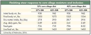 Steer Feeding Chart Take Another Look At Silage For Finishing Cattle Hay And