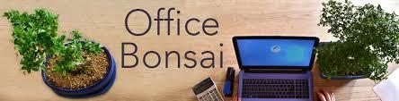 office bonsai tree. Bonsai For The Office Tree