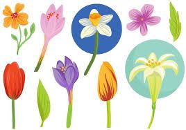 free spring flowers vectors