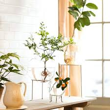 it glass plant stand black unique decorative indoor outdoor stands made of wood metal iron