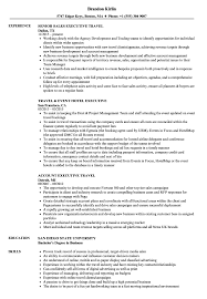 Executive Resume Sample Travel Executive Resume Samples Velvet Jobs 9