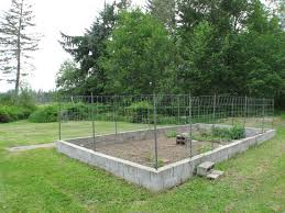 deer proof garden. 239 Best Deer Proof Garden Images On Pinterest | Vegetable Garden, And Red