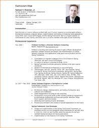Google Resume Samples Gallery of google resume samples Example Of A Cv Resume resume 27