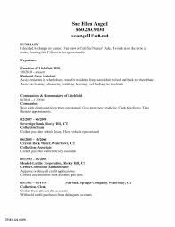Server Resume Template New Resume Sample Transferable Skills New