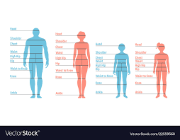 Man Woman Boy And Girl Size Chart Human Front