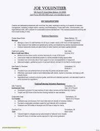 Cv Resume Template Free Download Best Of Besten Der Lebenslauf Doc