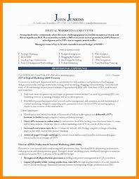Financial Advisor Marketing Plan Template Business Plan