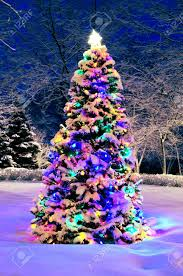 christmas outside lighting. Marvelous Christmas Tree Outside Lights Decorated With Covered Snow Lighting H