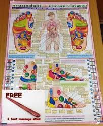 Thai Foot Reflexology Chart Details About Reflexology Thai Foot Massage Health Chart Free Wooden Massage Stick Tool
