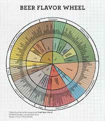 Hop Wheel Chart Daily Infographic Beer Edition The Beer Flavor And Aroma