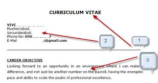How To Make Resume For Job For Freshers Model Resume Free Download