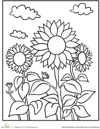 Small Picture Sunflower Patch Coloring Page Worksheets Sunflowers and