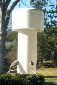 squirrel proof bird house grant squirrel proof bird feeder build squirrel proof bird house squirrel proof bird house