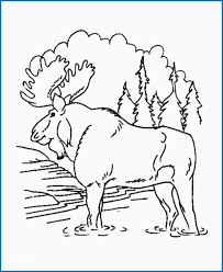 Moose Coloring Pages Unique If You Give A Moose A Muffin Coloring