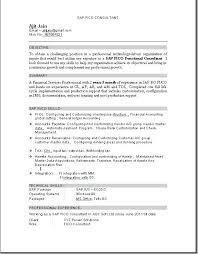 Plain Text Resume Sample