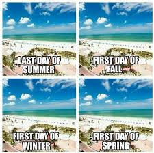 Florida Quotes Simple Florida Seasons Enjoying A Couple Weeks Of Sunshine Sandy Toes