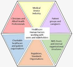 stakeholders in healthcare human factors working with different stakeholders in health