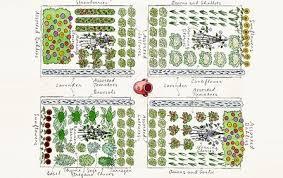 Small Picture Vegetable Garden Plans DesignerStyle