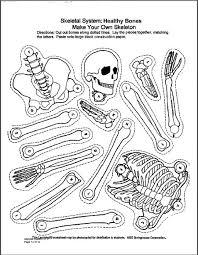 b32217c04b739023ebafa18d94dc29ac skeletal system quiz skeletal system and worksheets on connectives worksheet for grade 5