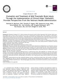Vha Organizational Chart 2017 Pdf Evaluation And Treatment Of Mild Traumatic Brain Injury