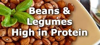 Legumes Protein Content Chart Top 10 Beans And Legumes Highest In Protein