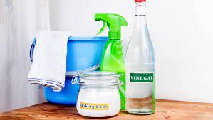 using vinegar to kill mold