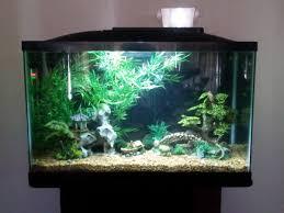 Mario Brothers Aquarium Decorations Top 10 Diy Aquarium Ideas For Your Next Aquarium Project