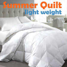 Single/Double/Queen/King/Super King Light Weight Summer Quilt ... & Image is loading Single-Double-Queen-King-Super-King-Light-Weight- Adamdwight.com