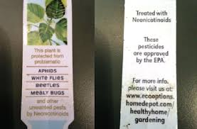 Image result for neonic pesticide plant tag