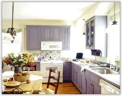 kitchen cabinet color ideas with white appliances