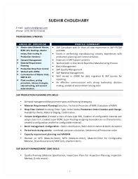 Sap Mm Consultant Resume Sap Resumes Sap Mm Consultant Cv Template