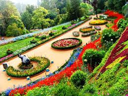 Ooty Tourism: Travel Guide, Hotels, Reviews - HolidayIQ